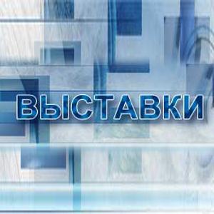 Выставки Турунтаево